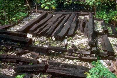 Nan Madol - o lecţie de arhitectură
