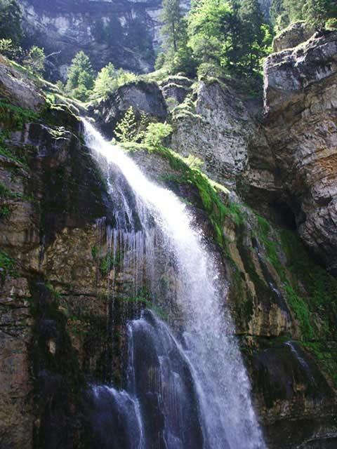 Apa vie Made în Romania – compilaţie (2)
